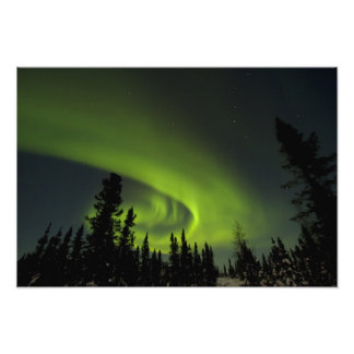 Canada, Manitoba. View of aurora borealis and Photo Art