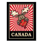 Canada Moose Postcard