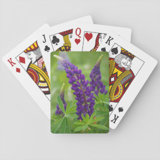Canada, New Brunswick, . Playing Cards