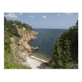 Canada, Nova Scotia, Cape Breton Island, Cabot Postcard