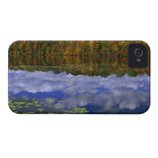 Canada, Ontario. Autumn color reflects in Park Case-Mate iPhone 4 Case