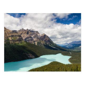 Canada - Peyto Lake postcard