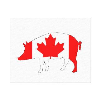 Canada Pig Canvas Print