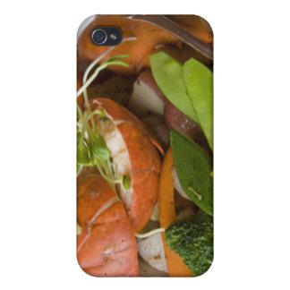 Canada, Prince Edward Island, iPhone 4 Covers