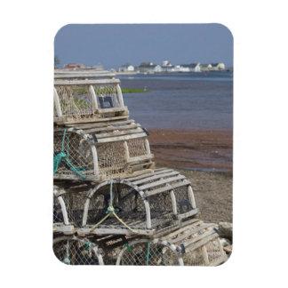Canada, Prince Edward Island, Rustico. Lobster Rectangular Photo Magnet