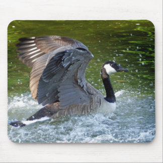 Canada Splashing in the Water Mouse Pad
