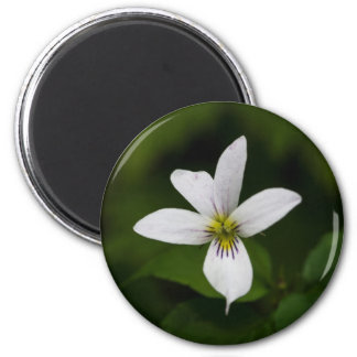 Canada Violet White Wildflower Floral Round Magnet