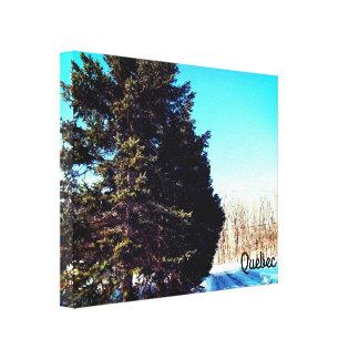 Canada Winter Canvas Print