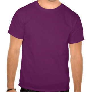 Canadian asexuality pride map T-Shirt