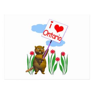 Canadian Beaver Loves Ontario Postcard