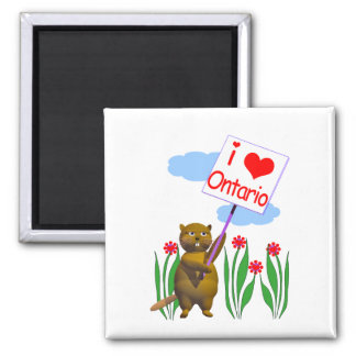 Canadian Beaver Loves Ontario Square Magnet