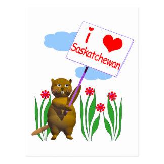 Canadian Beaver Loves Saskatchewan Post Card
