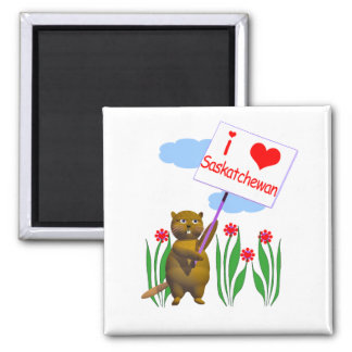 Canadian Beaver Loves Saskatchewan Square Magnet