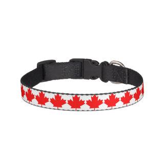 Canadian Collar Pet Collar
