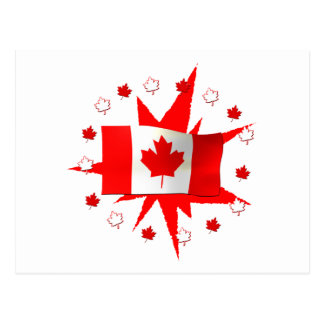 Canadian Flag Design Postcard
