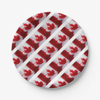 CANADIAN FLAG PAPER PLATE