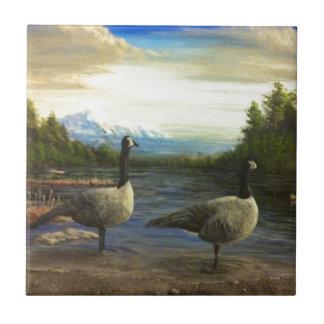Canadian Geese at Beaver Lake. Ceramic Tile