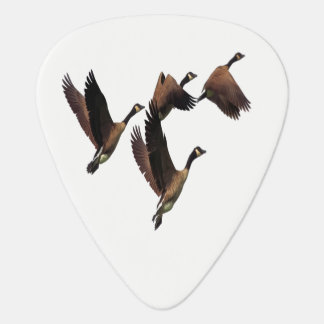 Canadian geese flying in a flock kids design plectrum