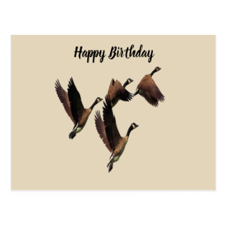 Canadian geese flying in a flock kids design postcard