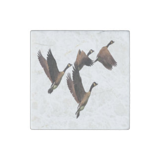 Canadian geese flying in a flock kids design stone magnet