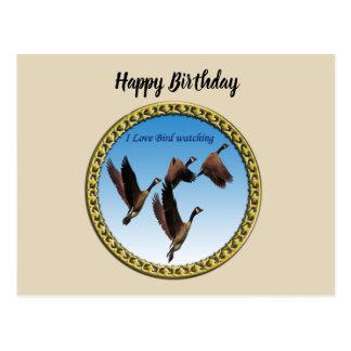 Canadian geese flying together kids design postcard
