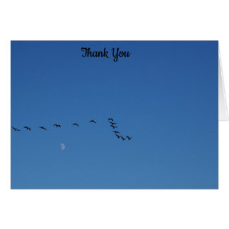 Canadian geese in flight card