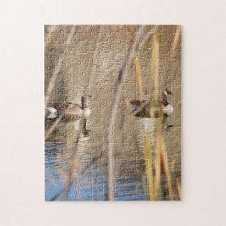 Canadian Geese Jigsaw Puzzle