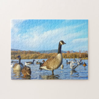 Canadian Geese. Jigsaw Puzzle