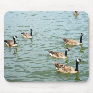 Canadian geese mouse pad