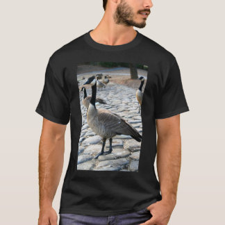 Canadian Geese Near The Lake T-Shirt