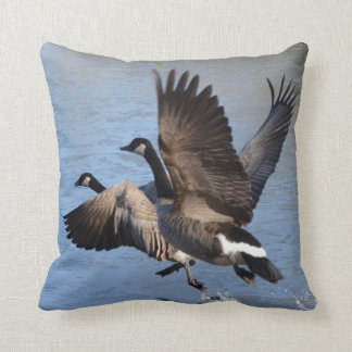 Canadian Geese Taking Flight Cushion