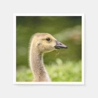 Canadian Goose (Gosling) Paper Napkins