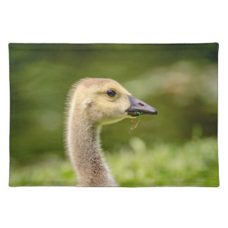 Canadian Goose (Gosling) Placemat