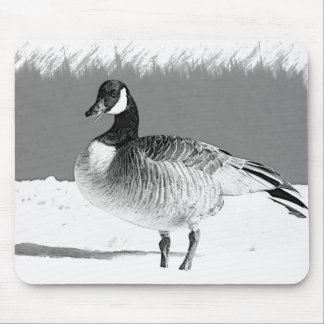 Canadian Goose in the snow Mouse Pad