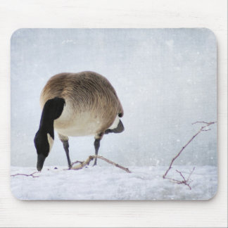 Canadian Goose in Winter Mouse Pad