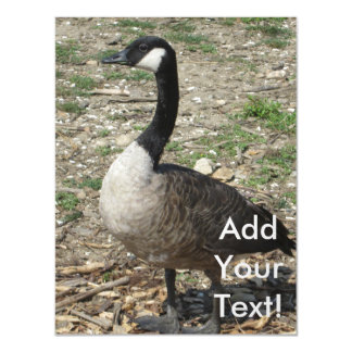 Canadian Goose Magnetic Invitations