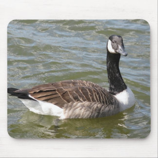 Canadian Goose Mouse Pad