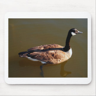 Canadian Goose w/Lazy Leg Mouse Pad