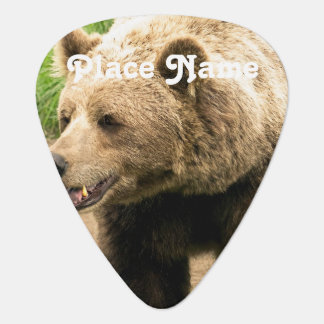 Canadian Grizzly Guitar Pick
