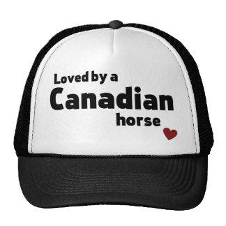 Canadian horse cap