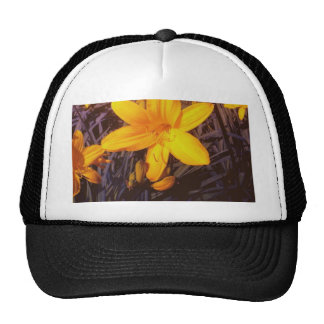 Canadian Lilly Hats