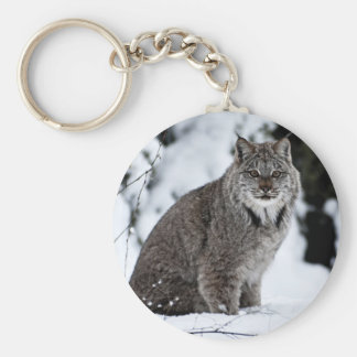 Canadian Lynx in the Snow Basic Round Button Key Ring