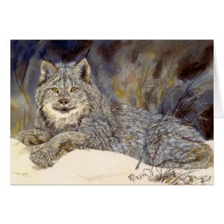 Canadian Lynx notecard
