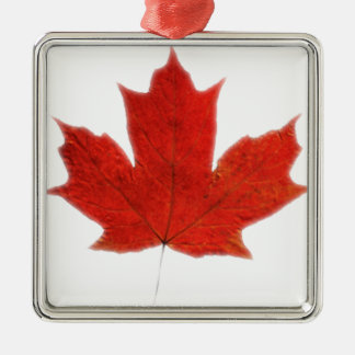 Canadian... Maple leaf Silver-Colored Square Decoration