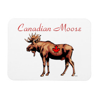 Canadian Moose Magnet