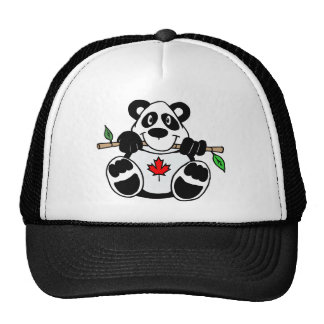 Canadian Panda Hat