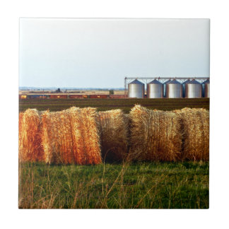 Canadian Prairies Small Square Tile