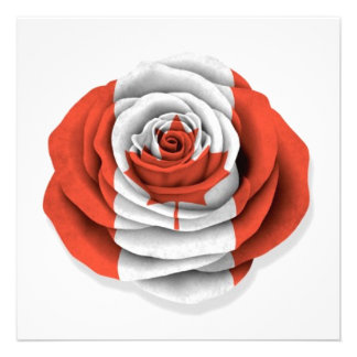Canadian Rose Flag on White Custom Announcement