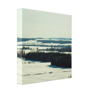 Canadian Winter Landscape Canvas Print
