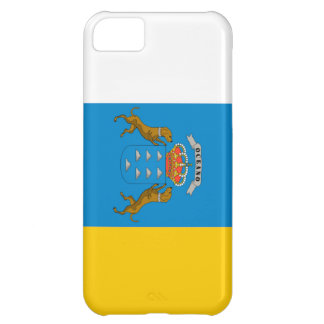 Canary Islands (Spain) Flag Case For iPhone 5C